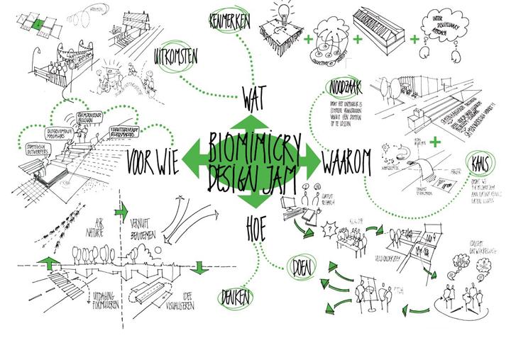 biomimicrydesignjamweb.jpg