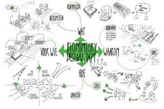 biomimicrydesignjamweb_th.jpg