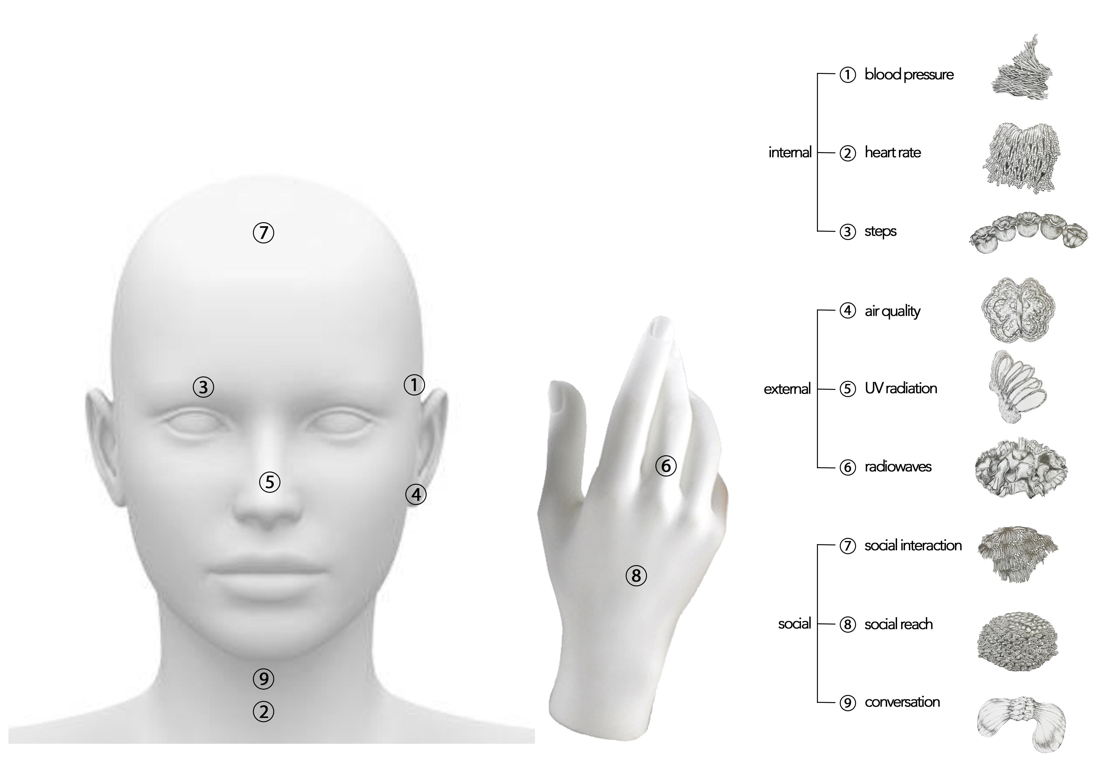 prostheticx.jpeg